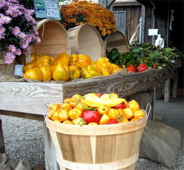 fresh vegetables at a farm stand